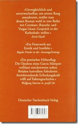 bolano_die wilden Detektive_Backside